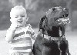 Выбираем собаку для себя и ребенка