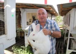 """Олег Дрожжин: \""""Зарабатываю на кроликах полтора миллиона рублей в год\"""""""