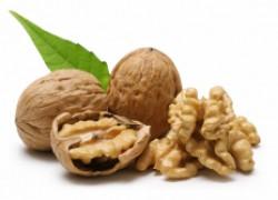 Как посадить грецкий орех и получить ранний урожай