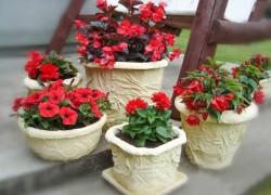 Вторая жизнь пластиковых цветочных горшков