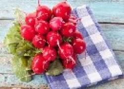 Осенний редис – самый вкусный, если его правильно посадить