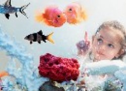 Экзотика в аквариуме