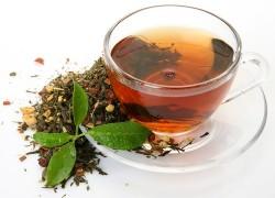 Чаепитие для растений
