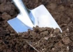 Когда и как копать