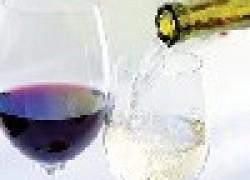 Можно ли делать вино из столового винограда?