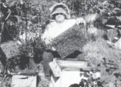 Занимаюсь пчелами с детства