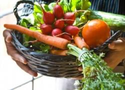 Как я выращиваю морковь с редиской