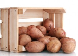 Картофель-баклажан