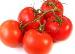Безотказный помидор