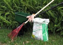 Борьба с вредителями сада осенью