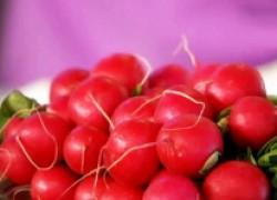 Повторные посевы редиса, картофеля и других культур