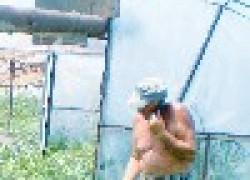 Василий Казаку: моя система полива позволяет сажать рассаду в 40-градусную жару