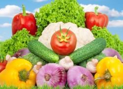 Семь причин невсхожести семян овощей