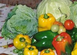 Как зимовать овощам в квартире