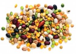 Вся польза бобовых в огороде