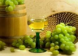 Куда пропал мускатный вкус винограда