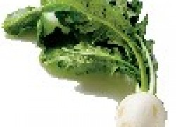 10 ошибок при выращивании редьки и дайкона