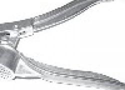 Прививочный секатор из чесночницы