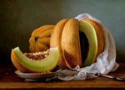 7 правил выращивания ароматной дыни