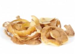 Хотите много смородины? Насушите картофельных очисток