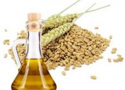 Рецепты красоты с маслом зародышей пшеницы