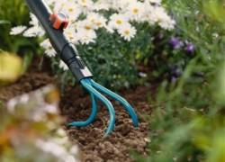 Как правильно содержать почву