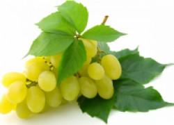 График подкормок винограда