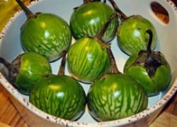 Зеленые сорта баклажанов, которые стоит посадить