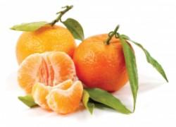 Напитки, фрукты и сладости в новогоднюю ночь