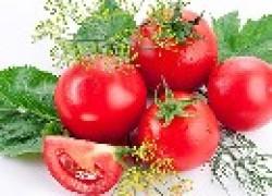 Почему помидоры невкусные