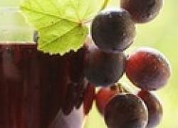 Сорта винограда для сока