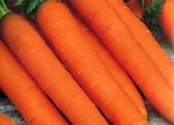 Почему вянет морковь