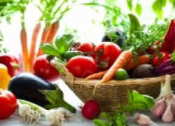 Сроки сбора урожая овощей