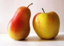 Яблоня и груша – чем что кормить
