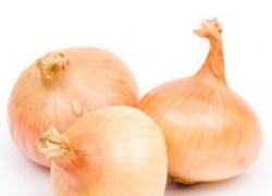 Секреты здоровых луковиц