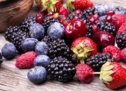 Прививки для ягодников – стоит ли игра свеч?