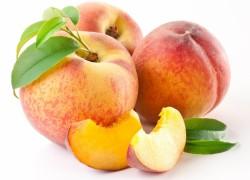 Уход за персиком