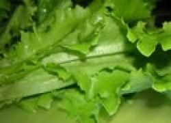Вопрос о салате