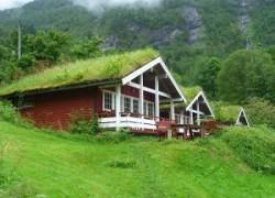 Торфяные крыши