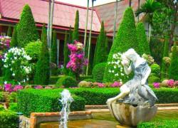 Советую украсить ваш сад декоративными кустарниками
