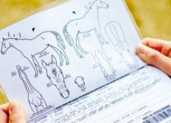Паспорт для лошади