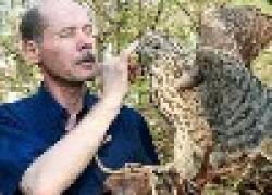 В мире животных Михаила Конева