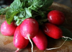 Сажаем помидоры, собираем редиску