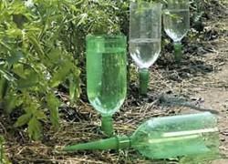 Применение пластиковых бутылок в огороде