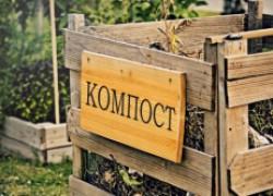 Можно ли из виноградных листьев делать компост?