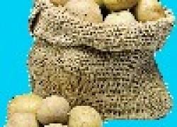 10 ошибок картофелевода