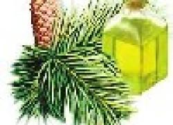 Пихтовое масло для лечения тройничного нерва