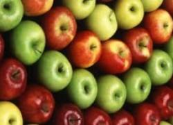 Яблоки омолодят организм