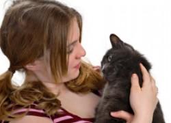 Котенок отказывается есть