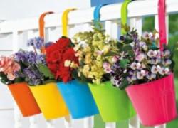 Идеальный цветник на балконе!